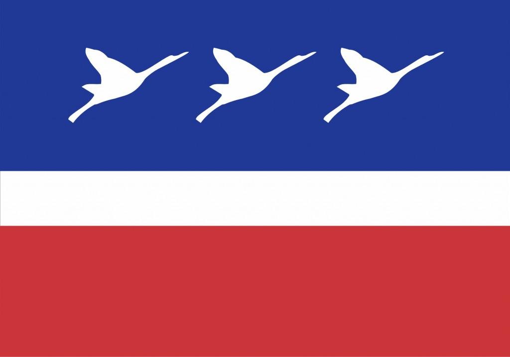 Bandeira_guaratingueta